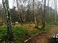 Dunphail Breathing Space on Dava Way - panoramio.jpg