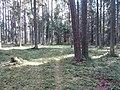 Dusetų sen., Lithuania - panoramio (121).jpg