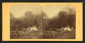 Eagle Cliff, Franconia, from Robert N. Dennis collection of stereoscopic views.png
