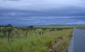 Middledrift, Eastern Cape - Landscape near Middledrift