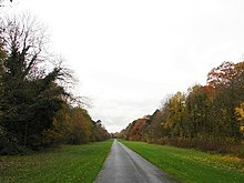 An empty drive runs into the distance, with lawns and banks of trees on each side