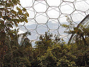 Eden Hexagonal Structure