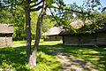 Eesti Vabaõhumuuseum 2292.jpg