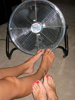 An electric fan being used in hot weather in A...