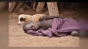 Arquivo: En.Wikipedia-VideoWiki-Malaria.webm