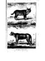 Encyclopedie volume 5-034.png