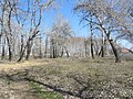 Engels, Saratov Oblast, Russia - panoramio (32).jpg