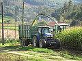 Ensiladora. Vilarromarís, Oroso. 20091025 0016.JPG