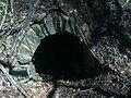 Entrance to ice cellar (3), site of Lexington plantation.jpg