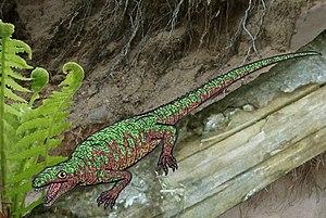 Eocaptorhinus - Reconstruction of Eocaptorhinus on a log.