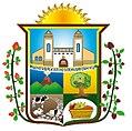 Escudo Huachi Grande.jpg