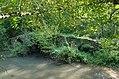 Esvres-sur-Indre (Indre-et-Loire) (21752414869).jpg