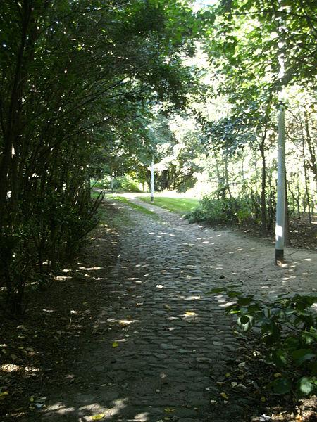 Ancien chemin de l'Est à Evere. Dernier tronçon d'une centaine de mètres avec le pavement du XVIIIe siècle.