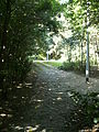 Evere-Chemin de l'est.JPG