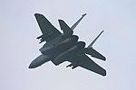 F15 Eagle - RAF Lakenheath 2008 (3148545442).jpg