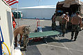 FEMA - 15212 - Photograph by Mark Wolfe taken on 09-11-2005 in Mississippi.jpg