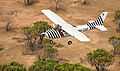 FZS plane conducting an aerial survey in Selous Game Reserve, Tanzania.jpg