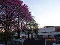 Fachada da Escola Estadual Castelo Branco.png