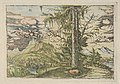 Facsimile Reproduction of Landscape with a Double Spruce MET DP834177.jpg