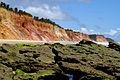 Falésias da praia de Jacarecica do Sul 03.jpg