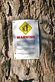 Falling branches warning sign.jpg