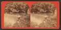 Falls on the Wissahickon, from Robert N. Dennis collection of stereoscopic views.png