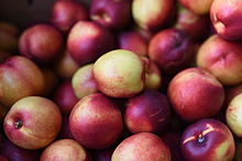 Farmers' market - Wikipedia