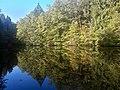 Feuersee Hardtwald.jpg