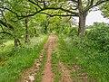 Field road in Bezonnes (1).jpg