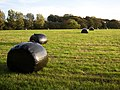 Field with bales, Rastrick - geograph.org.uk - 590481.jpg