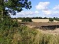 Fields next to Lampardbrook - geograph.org.uk - 2040787.jpg