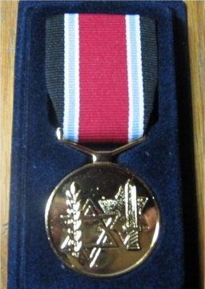 Fighter against the Nazis Medal