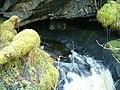 Finchairn River Cave - Resurgence - geograph.org.uk - 123946.jpg
