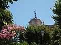 Fiori - panoramio (2).jpg