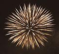 Fireworks 4 (5336298857).jpg