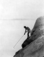 Fishing with a Gaff-hook—Paviotso or Paiute, c. 1924