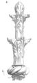 Fleuron.XIIIe.siecle.5.png