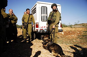 Flickr - Israel Defense Forces - Lt. Gen. Ashkenazi Visits Oketz Canine Unit.jpg
