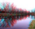 Flickr - jimf0390 - JimF 11-07-09-0006a reflections on lake at dusk.jpg