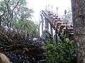 Flight of the Hippogriff at Islands of Adventure.jpg