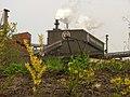 Flower - Trinecke zelezarny - panoramio.jpg