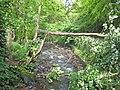 Flurry River at Proleek - geograph.org.uk - 494118.jpg