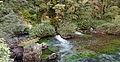 Fontaine de Vaucluse Sorgue 01.jpg
