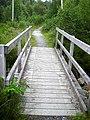 Footbridge in Leanachan Forest - geograph.org.uk - 511505.jpg