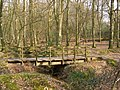 Footbridge over Latchmore Brook, Islands Thorns Inclosure, New Forest - geograph.org.uk - 386671.jpg