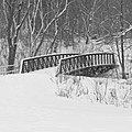 Footbridge over Toronto's Black Creek, on a snowy day, February 18th, 2019.jpg