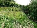 Footbridge over the Hoddnant, Frampton - geograph.org.uk - 859781.jpg