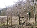 Footpath and stile, Knighton Wood - geograph.org.uk - 711320.jpg