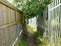 Footpath connecting allotments - geograph.org.uk - 1441377.jpg