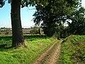 Footpath junction - geograph.org.uk - 248309.jpg